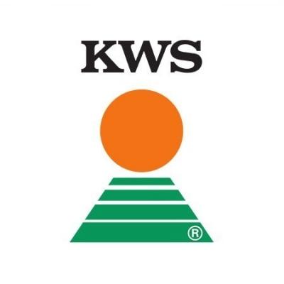 KWS – ZERBERUS - Hibrid sorg maturitate semi-timpuriu