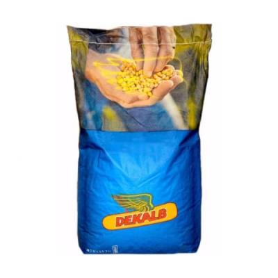 DEKALB DKC 5542 - Hibrid porumb siloz tardiv, Grupa FAO 440-490
