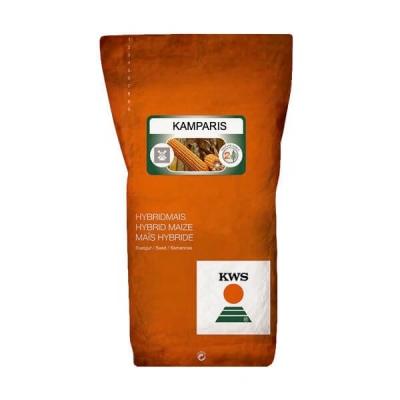KWS KAMPARIS - Hibrid porumb boabe si siloz semi-timpuriu, Grupa FAO 390