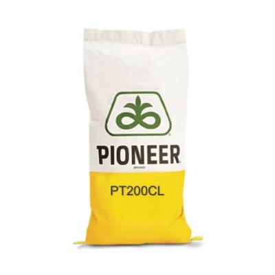Pioneer PT200CL - Hibrid rapita semi-timpuriu, Clearfield