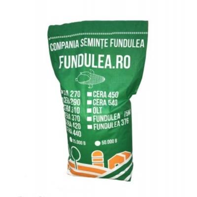 Fundulea CERA 270 - Hibrid porumb boabe timpuriu, Grupa FAO 270